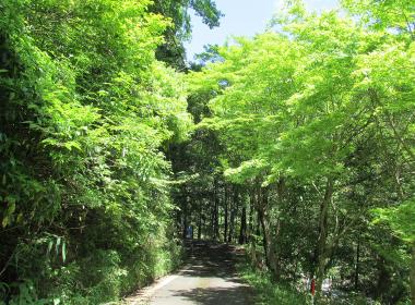東海道自然歩道